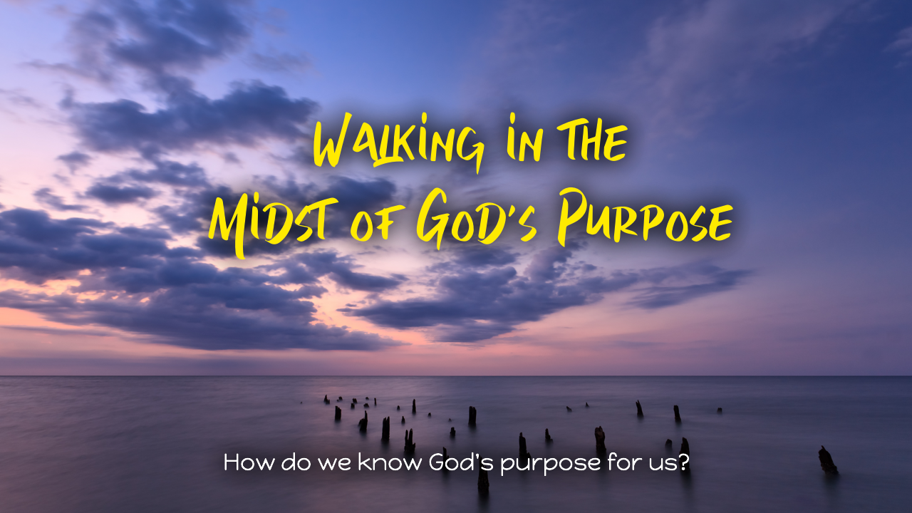 Walking in the Midst of God's Purpose